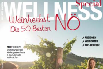 WMS-Weinherbst2016-Half