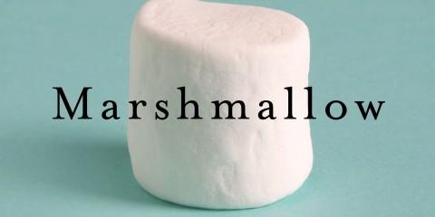 Der Marshmallow-Test von Walter Mischel