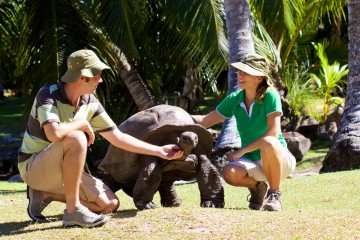 Raffles_Praslin-Ranger_for_a_day_-__The_turtles_on_Curieuse2