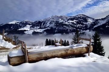 img_18796_winterwunderland