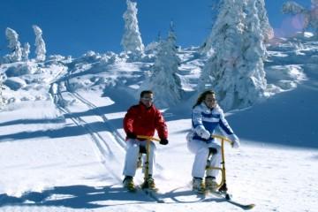 955~theresa-snowbiken-im-zillertal