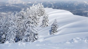 tiefverschneite-winterlandschaft-auf-der-gemeindealpe-mitterbach