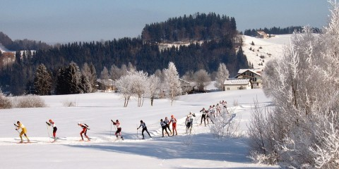 1200px-Cross-country_skiing_Schwedentritt