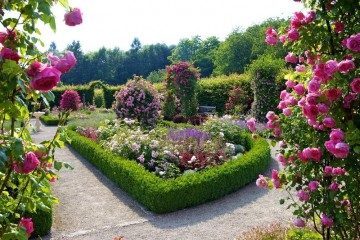 Garten-der-Sinne-10_my_xlarge