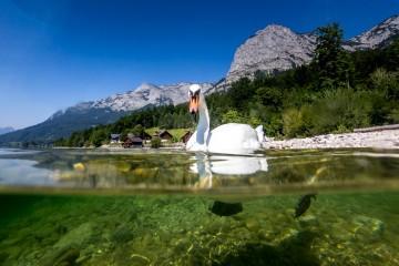 Aufmacher Steiermark Tourismus