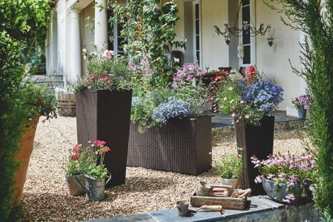 endlich garten teil 2 wellness magazin the way of life. Black Bedroom Furniture Sets. Home Design Ideas