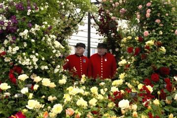 Flower Show,©RHS, Credit RHS, Hannah