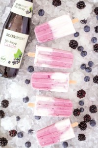 SodaStream_Wassereis_Bio-Sirup Cassis mit Waldbeere und Kokosmilch_kl50