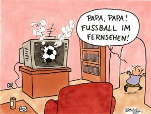 Oliver Ottitsch - Fussball im Fernsehen