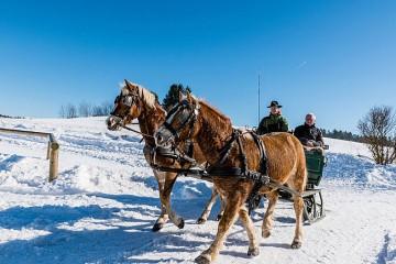 csm_2016-10-12_Pferdeschlittenfahren-im-Muehlviertel__c_Tourismusverband-Muehlviertler-Kernland_Hawlan_01_83f5931fc6