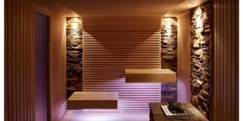sauna-erdmann-pur