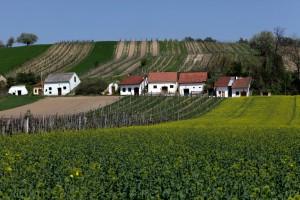 7 (c) Weinviertel Tourismus _ Christine Wurnig