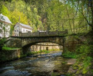 Germany-Austria-Switzerland_medium-sized_1221787_Bruecke_Pixabay_BFS_travel4dogs