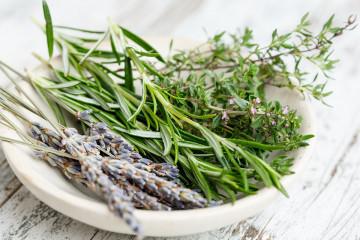 herbs-2523119_960_720