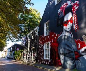 Festival Graphic Matters - Quelle Visit Brabant