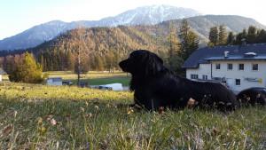 berggasthof-mamauwiese-familie-sobotka