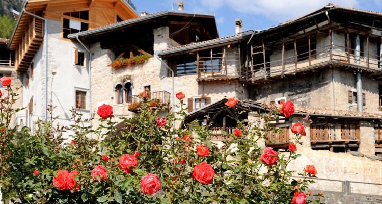 (c) Trentino Marketing_Rango_Beppe Bolchi
