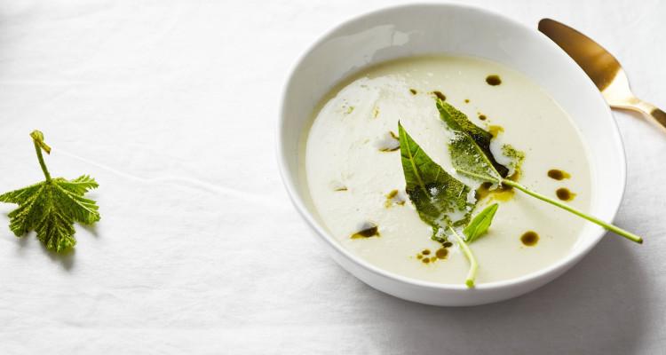 Kohlrabi Kokos Matcha Suppe 4