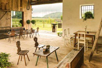 Ausblick aus Restaurant Sillys Kuchl nach draußen auf Weinstöcke